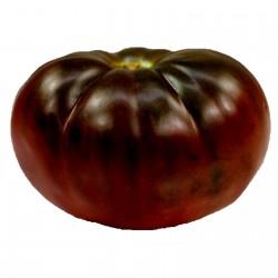 Graines Tomate ancienne noire BRANDYWINE BLACK 1.85 - 3