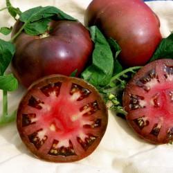 BRANDYWINE BLACK Tomato Seeds 1.85 - 2