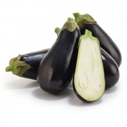 Aubergine - Äggplanta Frö Black Beauty 1.8 - 1