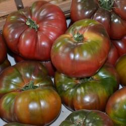 Graines Tomate Noire De Crimée 1.85 - 3