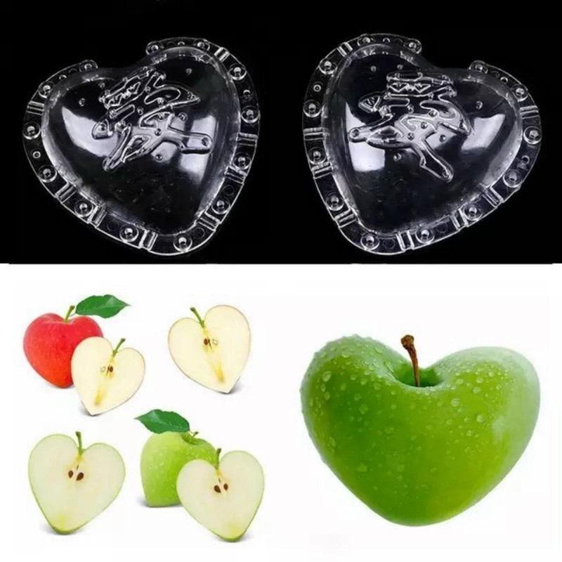 Fruit Mold in the form of Heart, pear, Muskmelon 15 - 3