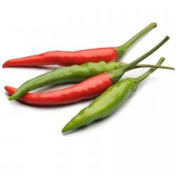Semillas de chile crudo (Capsicum frutescens) 1.95 - 4
