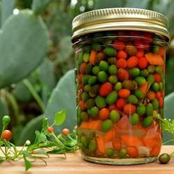 Semi di peperoncino Chiltepin 2.5 - 2