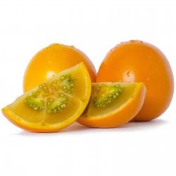 Lulo Samen Naranjilla (Solanum quitoense) 2.45 - 5