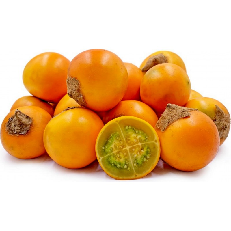 Lulo Samen Naranjilla (Solanum quitoense) 2.45 - 1