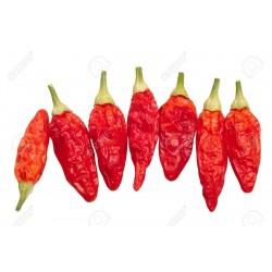 Chili Tabasco Samen 2.15 - 4