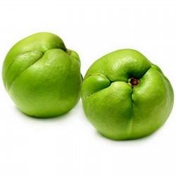 Elephant Apple Seeds...
