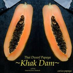 """KAK DUM"" Lång Papaya Dvärg..."