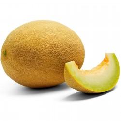 Sementes De MELAO ANANAS (Cucumis melo cv Ananas) 1.85 - 1