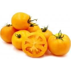 Graines Tomates jaunes-oranges Golden Jubilee 1.55 - 2