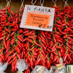 Semillas de PEPERONCINO italiano 1.55 - 1