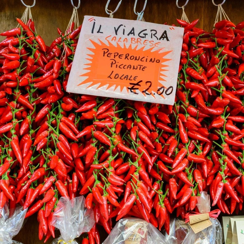 Italian PEPERONCINI Hot Chili Seeds 1.55 - 1