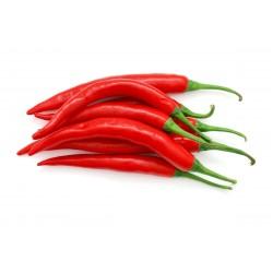 Graines de piment de Cayenne RING OF FIRE 1.7 - 1