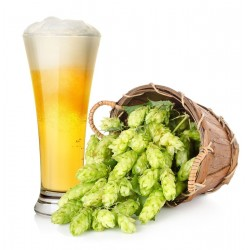 Beer Hops Seeds (Humulus lupulus) 1.85 - 1