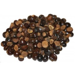 Guaraná Samen (Paullinia cupana) 5 - 3