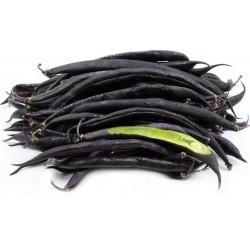 Dwarf French bean Purple Queen Seeds 1.95 - 2