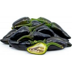 Semi di Peperoncino Jalapeno Purple, Viola e Marrone 1.75 - 1