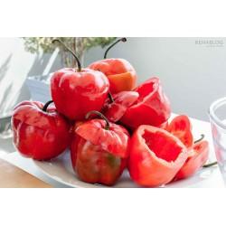 Rocoto Manzano Chili Samen 2.5 - 9