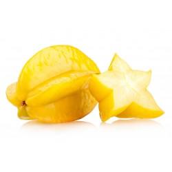 """""""Stjärnfrukt"""" Frön Averrhoa Carambola Tropical 4 - 2"""
