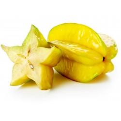 """""""Stjärnfrukt"""" Frön Averrhoa Carambola Tropical 4 - 4"""