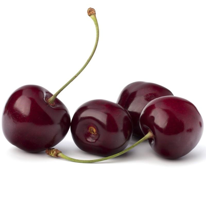 Tresnja Seme (Prunus avium) 1.45 - 5
