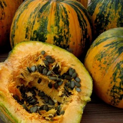 Oilseed Pumpkin - Naked Seeded Pumpkin Seeds 1.55 - 1