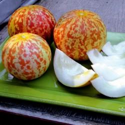 Armenian Tigger Melon Seeds 2.95 - 4
