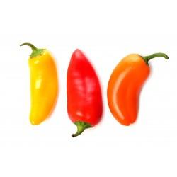 Sementes de Pimenta SANTA FE GRANDE - GUERO 1.55 - 3