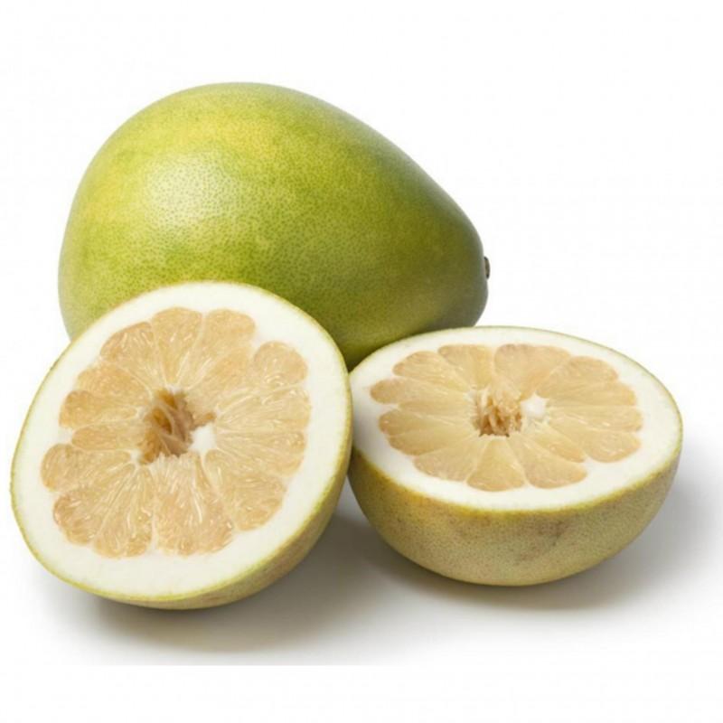 Pompelmus-Pomelo Frön (Citrus maxima) 1.95 - 4