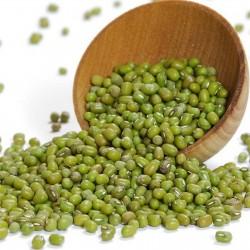 Graines de Haricot Mungo ou Ambérique Verte 1.5 - 3