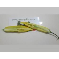 Graines de Piments Lemon Drop (Capsicum baccatum) 1.5 - 4