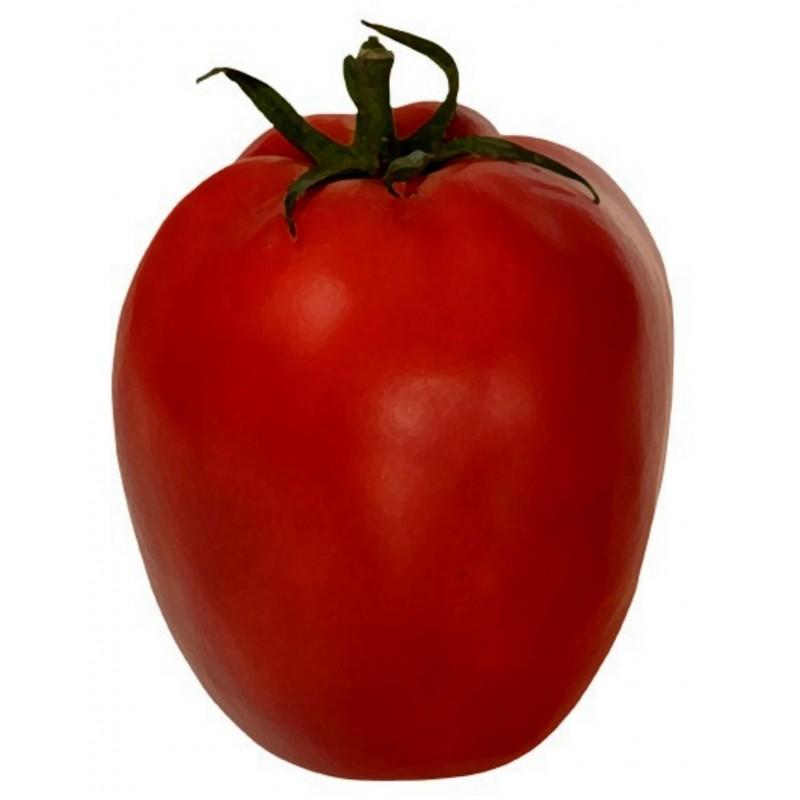 Alparac Tomato Seeds - Variety from Serbia 1.95 - 1