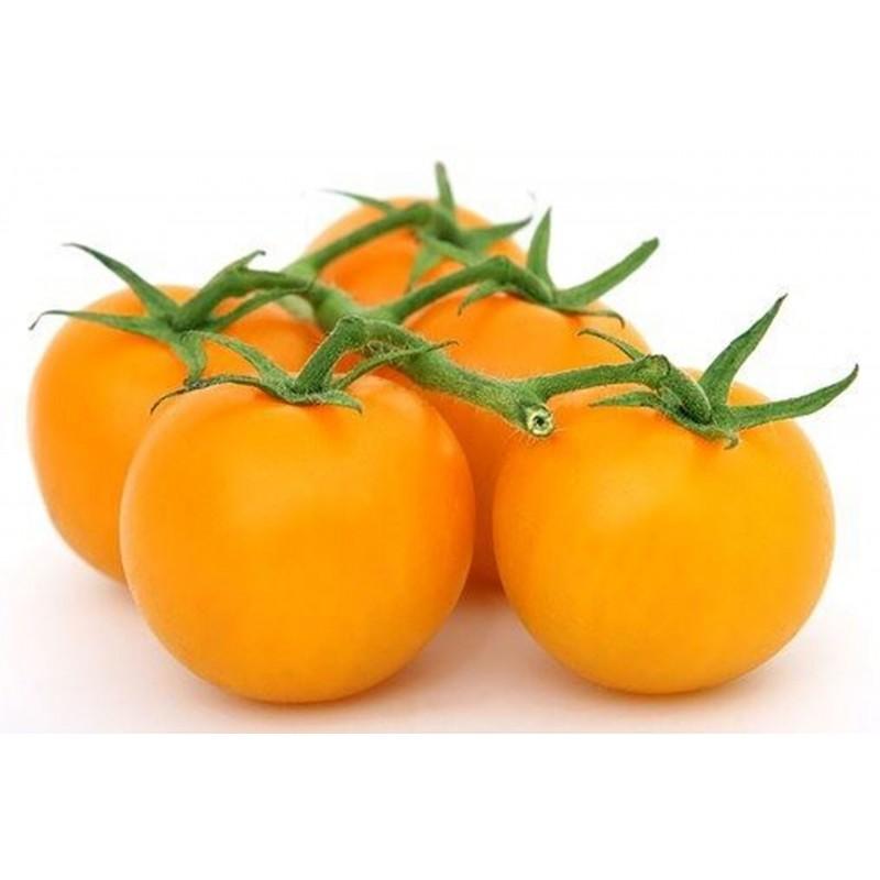 Ντομάτα σπόρος GOLD NUGGET 1.85 - 1