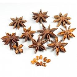 Semi di Anice Stellato (Illicium verum) 3.5 - 5