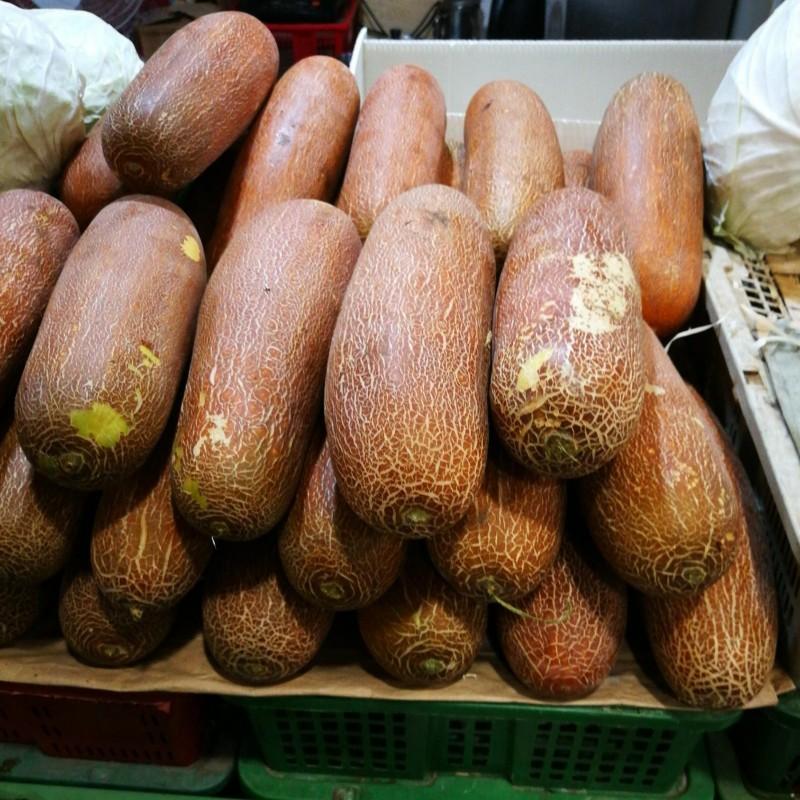 Netzgurke Samen - Poona Kheera 2.35 - 1