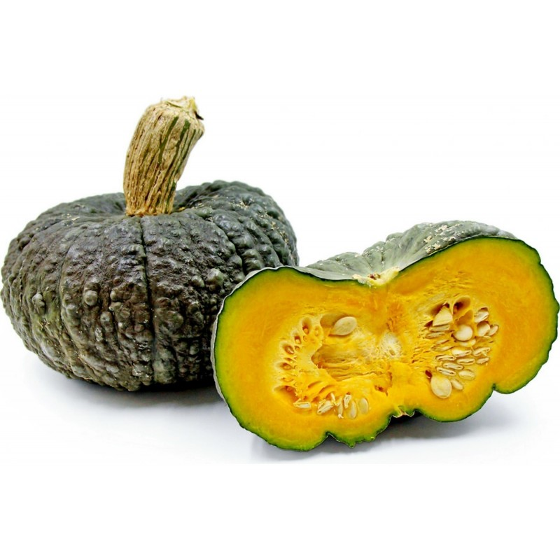 Marina Di Chioggia pumpkin Seeds 1.99 - 1