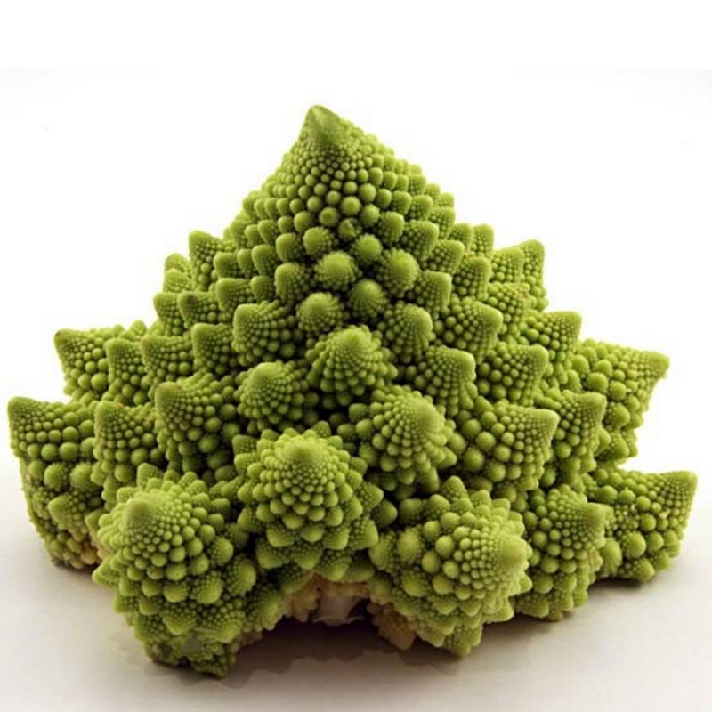 Romanesco Cauliflower Seeds 2.75 - 1