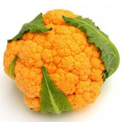 Blomkål Orange Fröer 2.75 - 1