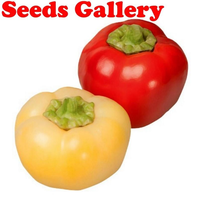 Σπόροι πιπέρι ''Novosadjanka'' 1.85 - 1