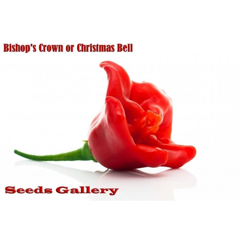 Semillas de Pimiento Chili Bishops Crown