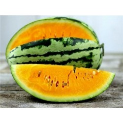 Orange Tendersweet Heirloom Vattenmelon Frön