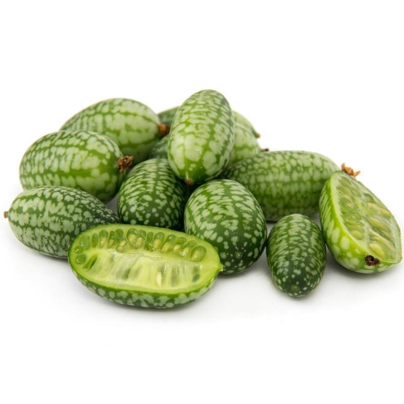 Graines de Cucamelon - Mini pastèque 1.85 - 1
