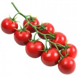 Paradiso Midi Rispen tomatfrön