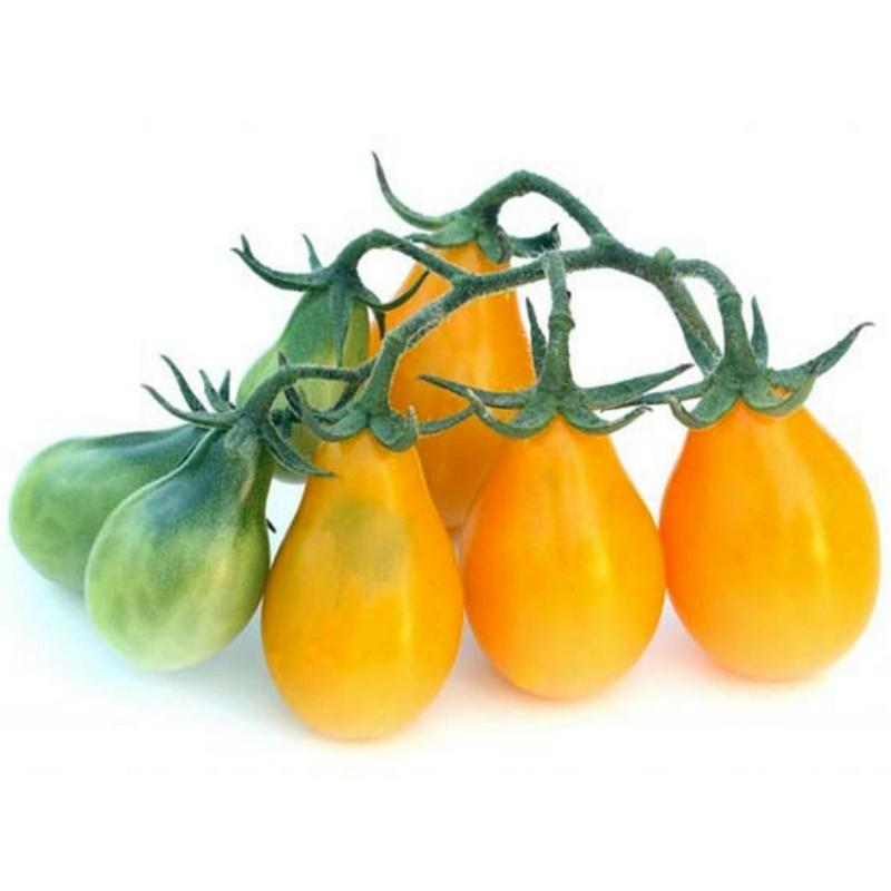 Graines Tomate Poire Jaune 1.95 - 1