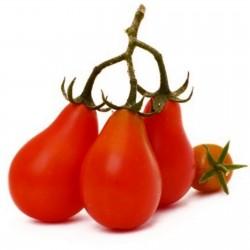 Semillas de Tomate Cherry Rojo Pera 1.9 - 1