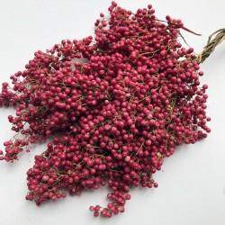 Peruvian Pepper, Pepper Tree Seeds (Schinus molle) 1.85 - 1