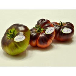 Mar Azul tomato seeds 1.75 - 6