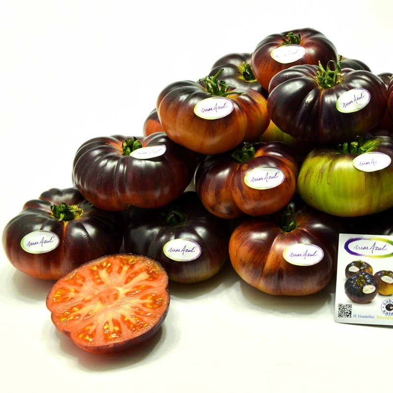 Mar Azul tomato seeds 1.75 - 1
