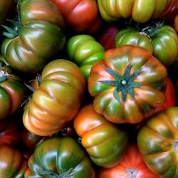 Autentični Muchamiel paradajz seme 1.65 - 1