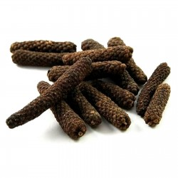 Long pepper Seeds - Indian long pepper 2.55 - 1